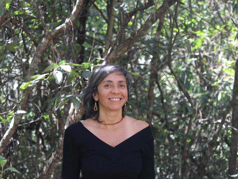 ane alencar fala sobre a relação entre desmatamento e clima no brasil